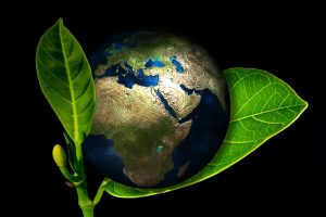 earth-industrial-upcycling